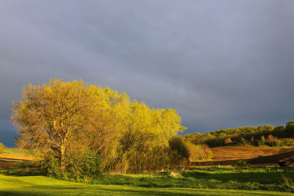 Farm view with dark clouds and sunlight.