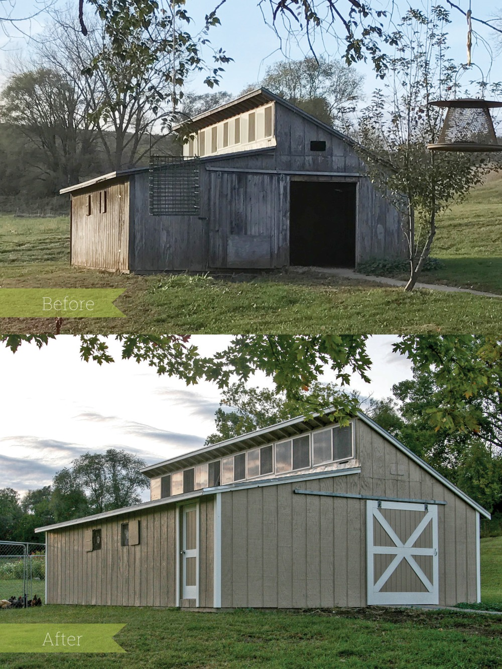 New Coop Before & After Layouts Final